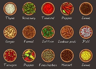 Vector illustration of a variety of spices and herbs in wooden bowls on a black background