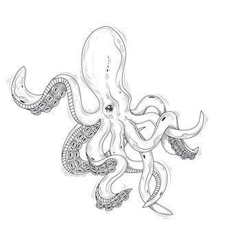 Vector illustration of an octopus painted in an engraving style isolated on white.
