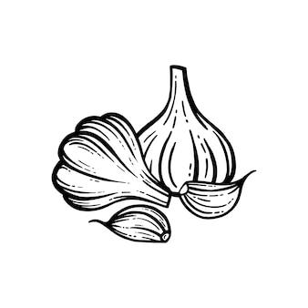 Векторная иллюстрация чеснока на белом фоне.