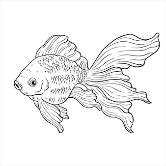 Векторная иллюстрация золотой рыбки рука рисовать или эскиз стиля
