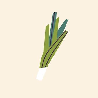 Векторная иллюстрация зеленого стебля лука-порея, изолированные на белом фоне.