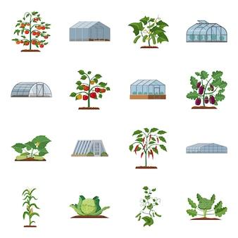 温室と植物のアイコンのベクトルイラスト。 webの温室と庭のストックシンボルのセット。