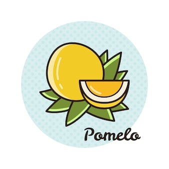 Vector illustration of pomelo.