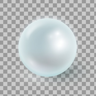 Vector illustration of realistic pearl isolated