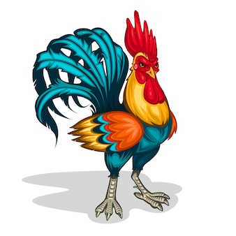 Vector illustration of a rooster