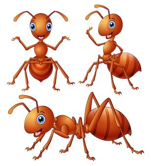 Vector illustration of set of brown ants cartoon
