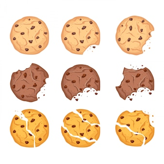 Vector illustration set of different shapes oatmeal, chocolate and wheaten cookies with chocolate drops and crumbs