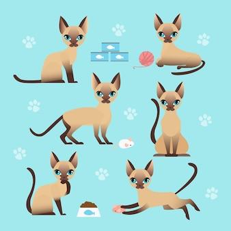 さまざまなポーズでかわいい猫のベクトルイラストセット。子猫を食べて、寝て、座って、遊ぶ