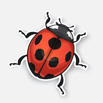 Vector illustration sticker of ladybug top view with contour red bug with black spots