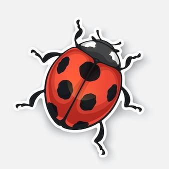 輪郭のてんとう虫の上面図のベクトルイラストステッカー黒い斑点のある赤い虫
