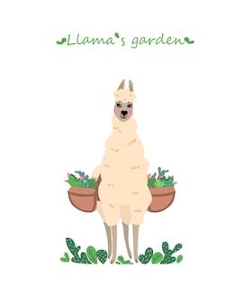 Vector illustration with cute llama gardener