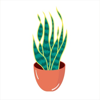Vector illustration with home potted houseplants in a flat style
