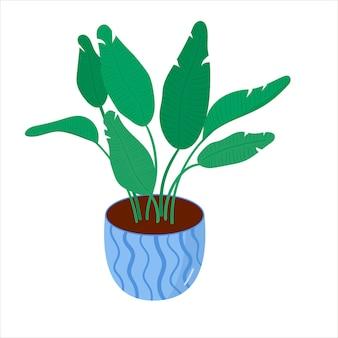 フラットスタイルの家の鉢植えの観葉植物とベクトルイラスト