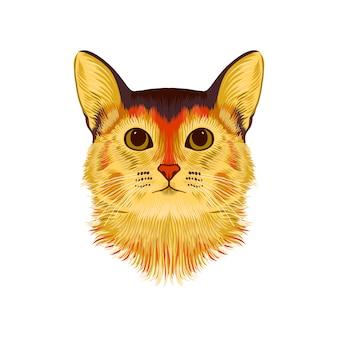 Вектор иллюстративный портрет кота