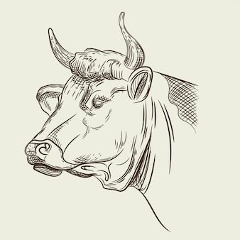 Vector image of a cow head