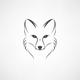 Vector image of a fox design on a white background