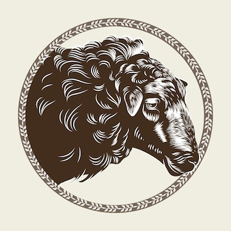 Vector image of a sheep's head in the style of engraving.