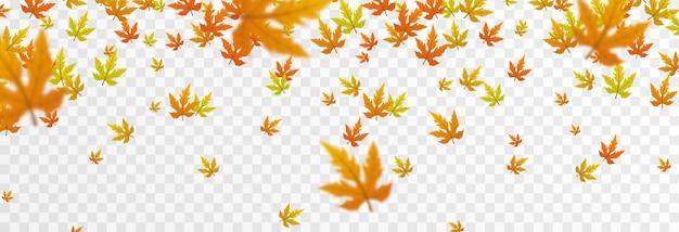 Вектор листопад на изолированном прозрачном фоне осенние листья падают с дерева