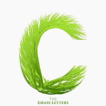 Lettera di vettore c di alfabeto di erba succosa