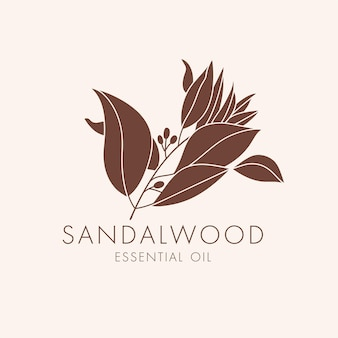 Vector linear botanical icon and symbol - sandalwood. design logo for essential oil sandalwood. natural cosmetic product.