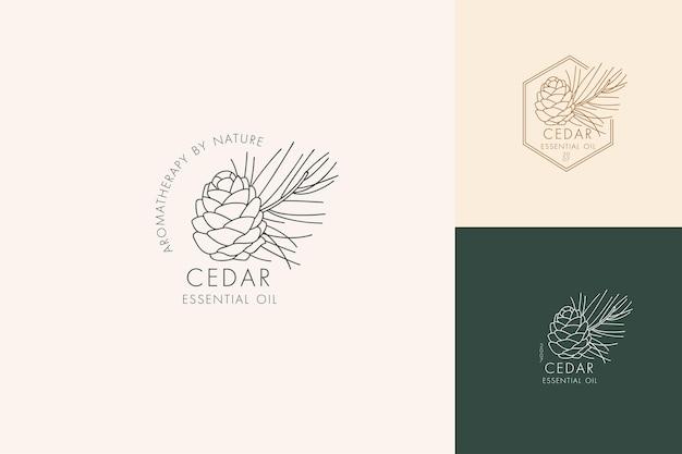 植物のアイコンと記号のベクトル線形セット-杉。エッセンシャルオイル杉のロゴをデザインします。天然化粧品。