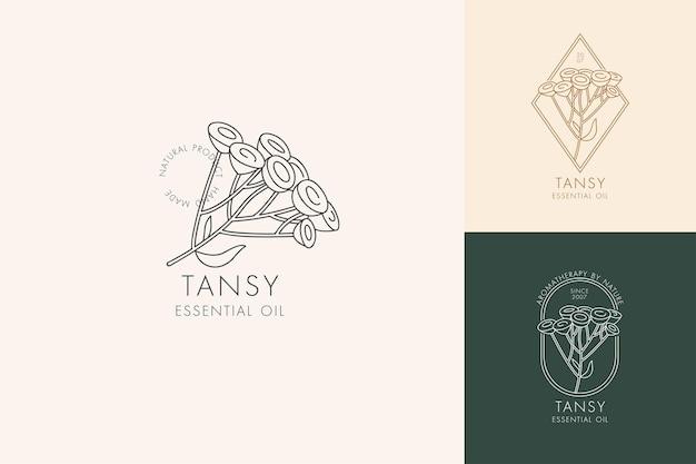 植物のアイコンと記号のベクトル線形セット-タンジー。エッセンシャルオイルタンジーのロゴをデザインします。天然化粧品。