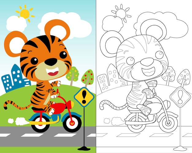 Vector of little tiger cartoon on motorbike, coloring book.