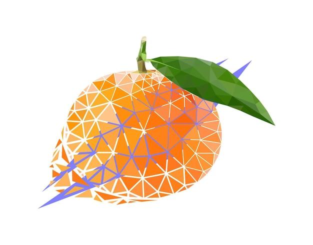 Vector mandarin in low poly style. digital art