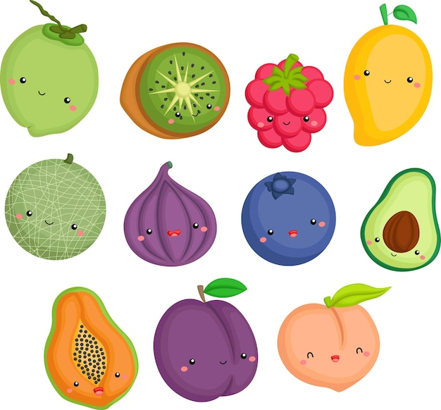 A vector of many fruits in one collection