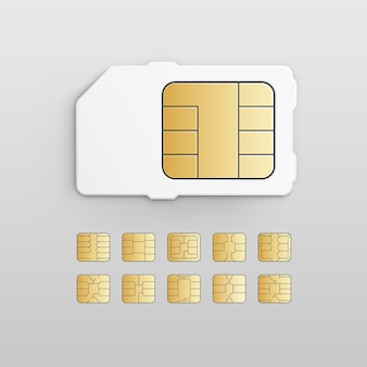 Vector mobile cellular phone sim card chip set isolated on white