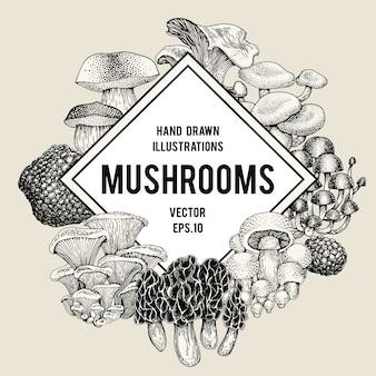 Vector mushroom design template.