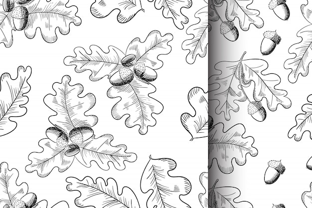 Vector oak leaf and acorn drawing seamless pattern set.
