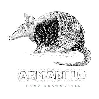 Вектор броненосца. нарисованные от руки иллюстрации животных выглядят реалистично