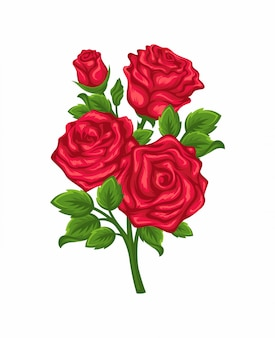 白い背景で隔離赤いバラの枝のベクトル。
