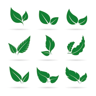 緑の葉のベクトルは、白い背景の上のアイコンセットデザイン自然