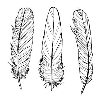 ベクトルアウトラインの羽
