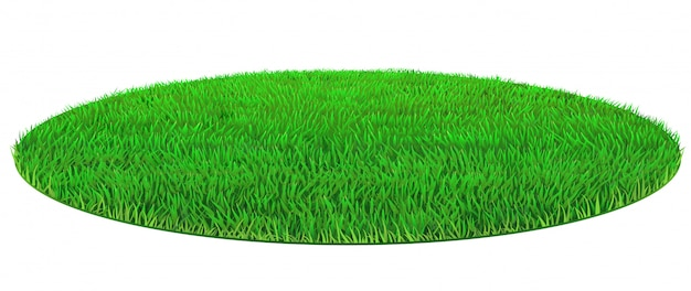 Vector oval green lawn grass texture