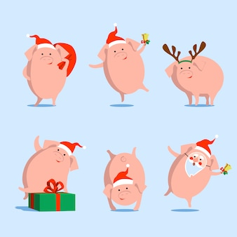 Vector pig, symbol of chinese new year, christmas,  on isolated background.