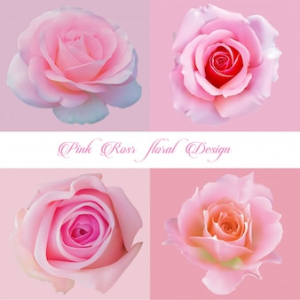Vector pink rose  set
