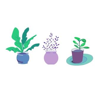 Vector plant pot blue tone