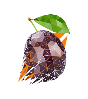 Vector plum in low poly style. digital art