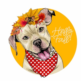 Vector portrait of pit bull terrier dog wearing autumn leaves crown.