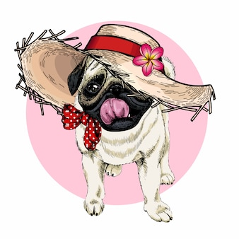 Vector portrait of pug dog wearing straw hat, flower and polka dot bow.