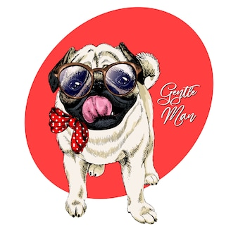 Vector portrait of pug in glasses and tie bow