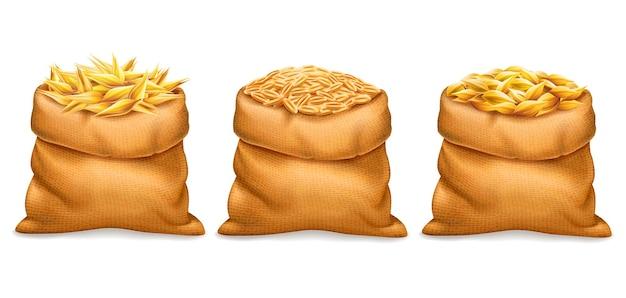 Вектор реалистичный мешок с очищенными и неочищенными зернами пшеницы ячменя с колосьями пшеницы, изолированными на