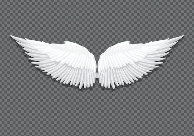 Vector realistic elegant white angel wings