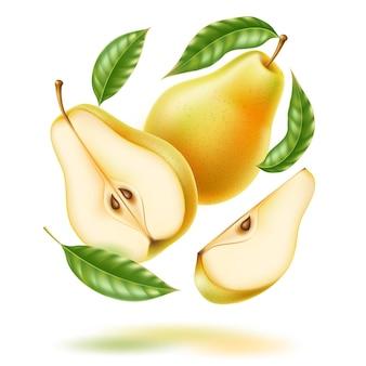 Вектор реалистичные свежая груша с листовыми зелеными фруктами