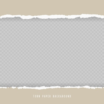 Vector realistic hole torn in paper with shadows isolated on transparent background