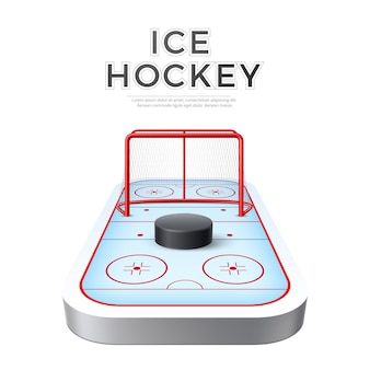 Vector realistic ice hockey playground arena with goal and puck