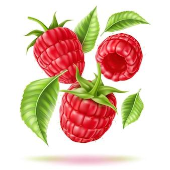 녹색 haulm 벡터 현실적인 딸기와 육즙 포레스트 열매 잎